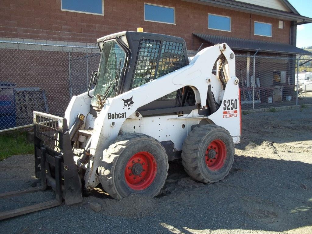 S250 Bobcat for rent
